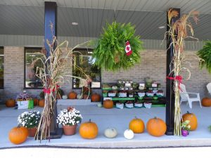 Fall 2014 on the front porch of Paisley freshmart