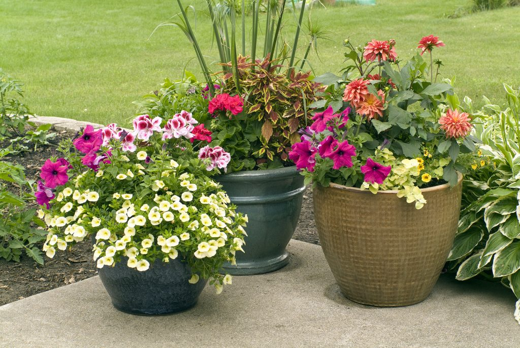 Outdoor Planters For Patios And Decks
