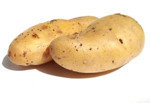 Lunch:  Mashed Potato Bar